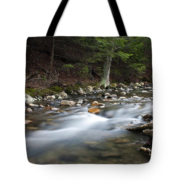 Coxing Kill In February #1 Tote Bag by Jeff Severson