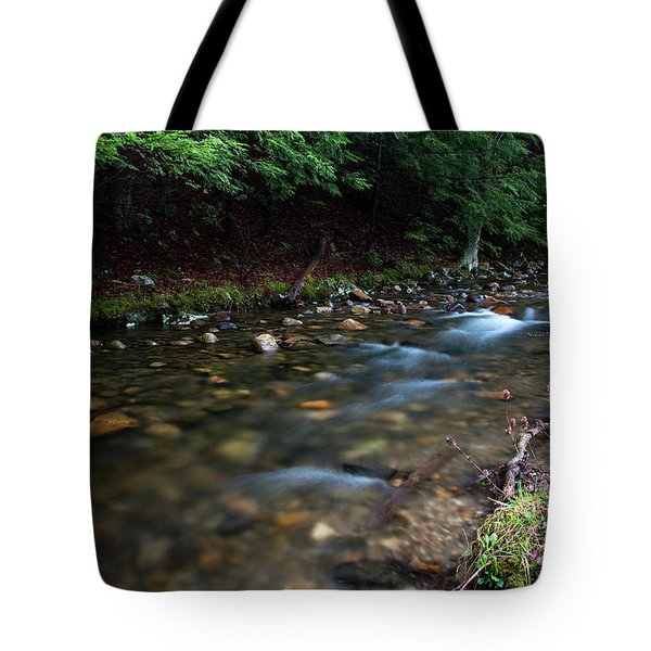 Coxing Kill On Earth Day 2017 I Tote Bag by Jeff Severson