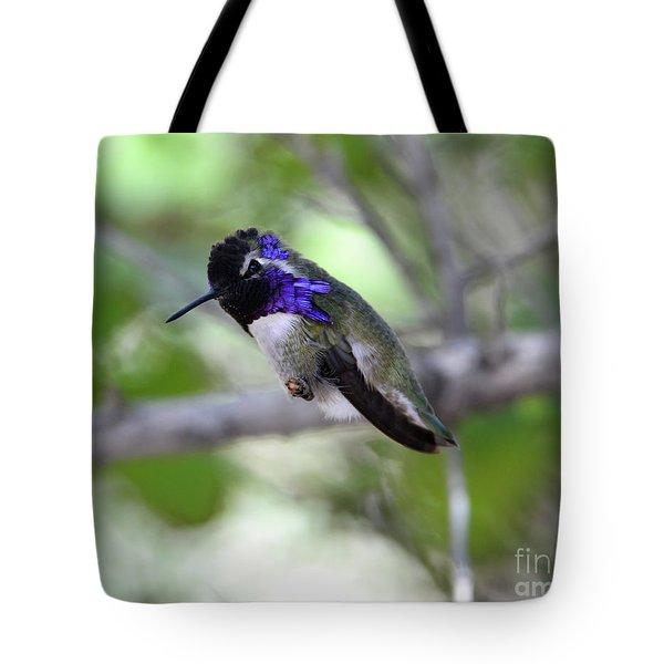 Coy Costa's Hummingbird Tote Bag