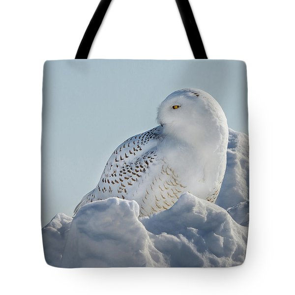 Tote Bag featuring the photograph Coy Snowy Owl by Rikk Flohr