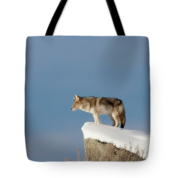 Coyote At Overlook Tote Bag