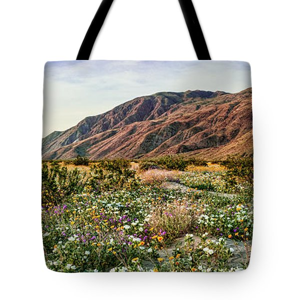 Coyote Canyon Sweet Light Tote Bag by Daniel Hebard