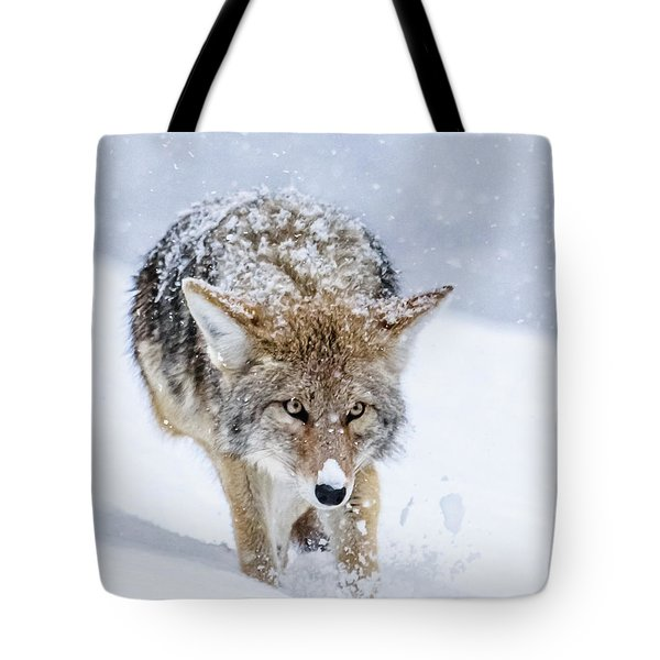 Coyote Coming Through Tote Bag