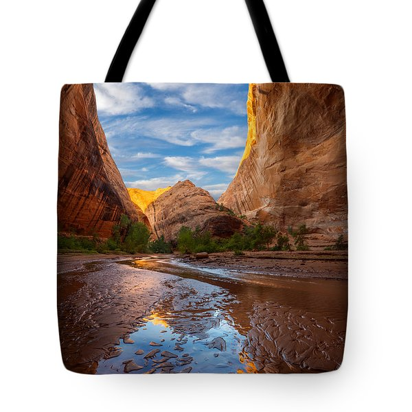Coyote Gulch Tote Bag