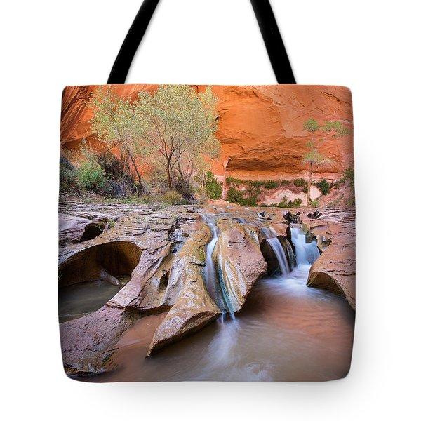 Coyote Gulch Tote Bag