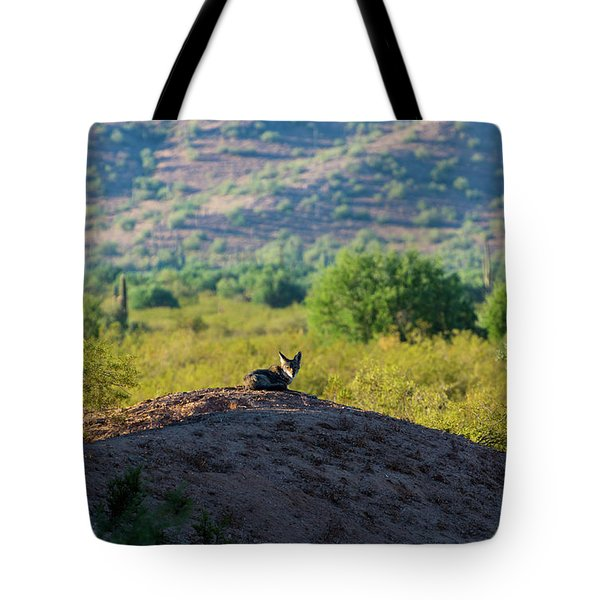 Coyote Hill Tote Bag
