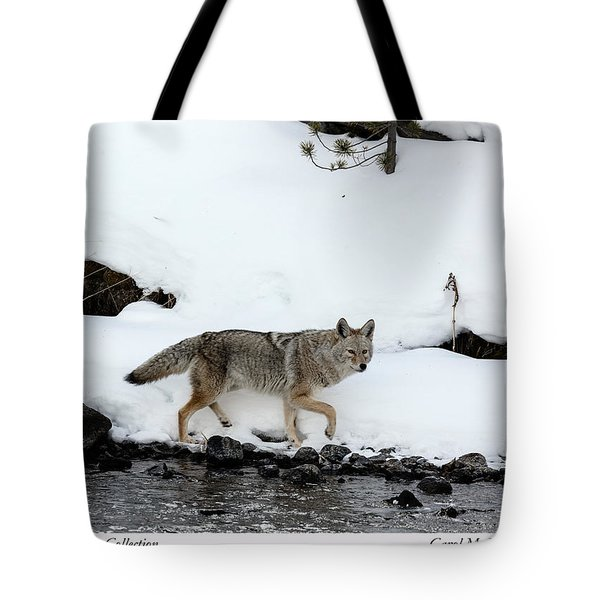 Coyote In Yellowstone National Park Tote Bag
