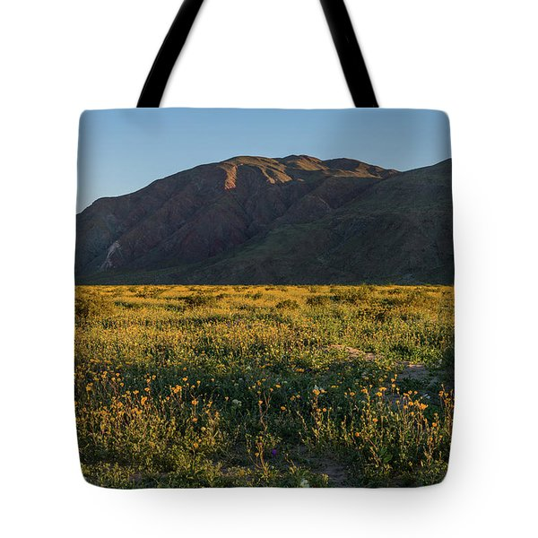 Coyote Mountain And Henderson Canyon Road Tote Bag