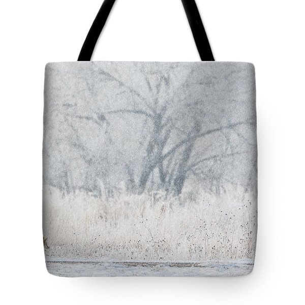 Coyote On The Hunt Tote Bag