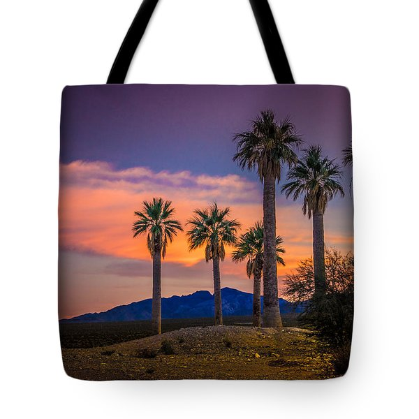 Coyote Springs Nevada Tote Bag by Janis Knight