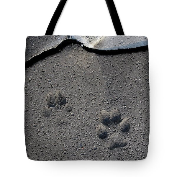 Coyote Tracks Tote Bag