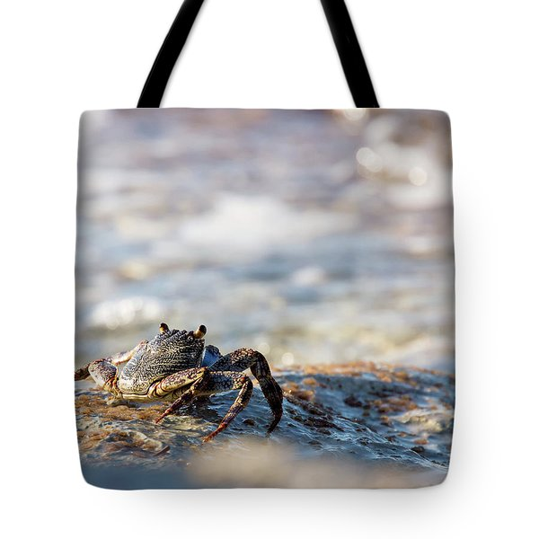 Crab Looking For Food Tote Bag