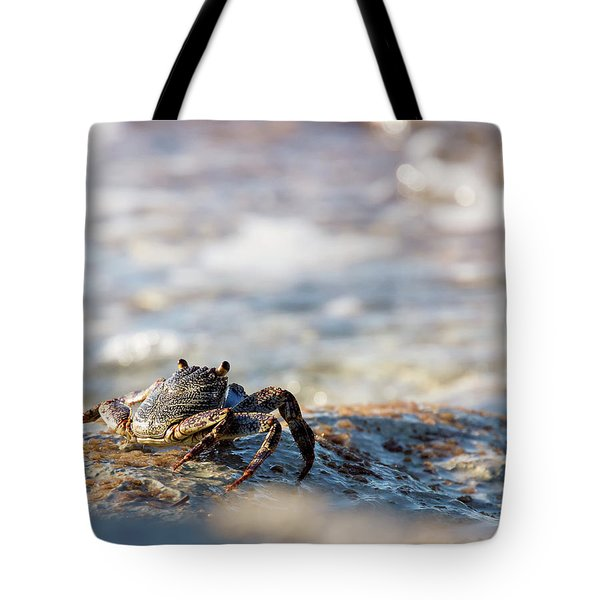 Tote Bag featuring the photograph Crab Looking For Food by David Buhler