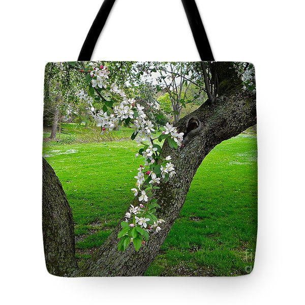 Crabapple Blossoms On A Rainy Spring Day Tote Bag