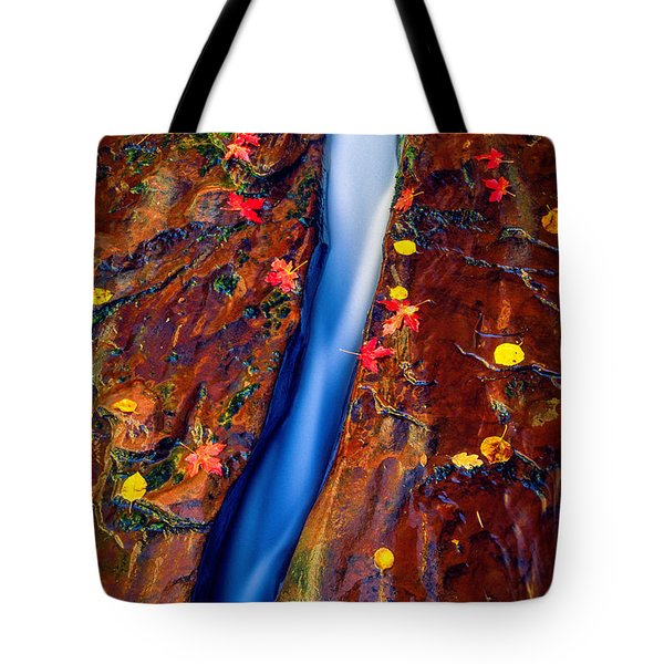 Crack In The Rock Tote Bag by Inge Johnsson