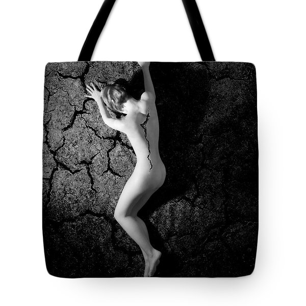 Cracked Desire  Tote Bag