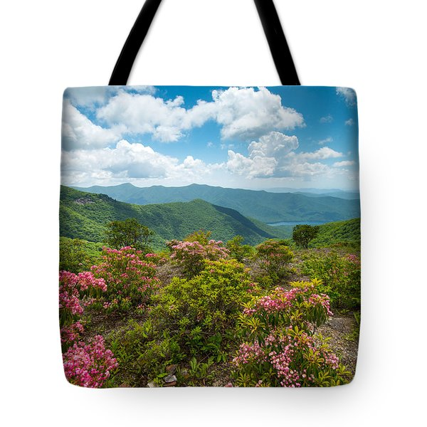 Craggy Gardens Blue Ridge Parkway Stunning Vista Tote Bag by Rick Dunnuck