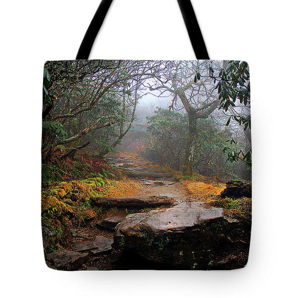 Tote Bag featuring the photograph Craggy Gardens by Jessica Brawley