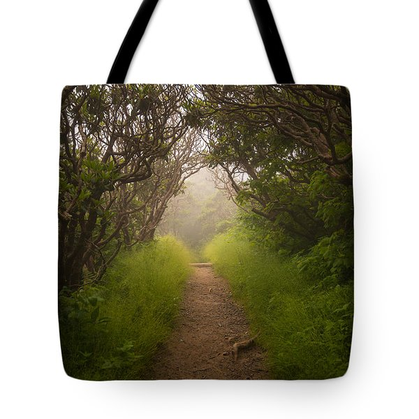 Craggy Pinnacle Trail Blue Ridge Parkway Tote Bag by Rick Dunnuck