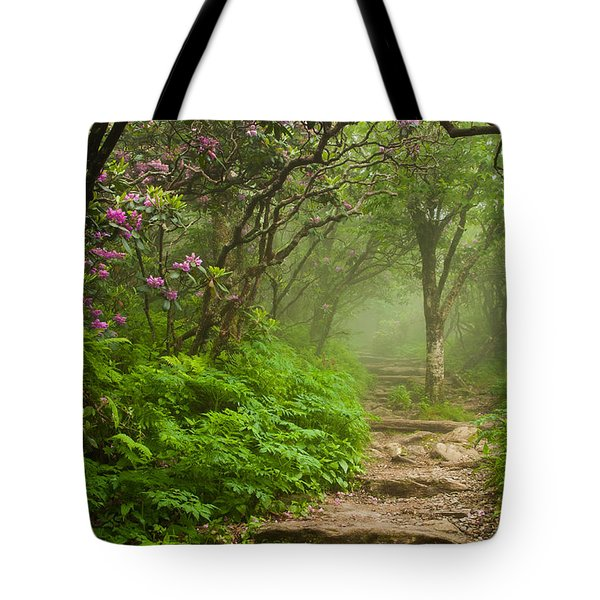Tote Bag featuring the photograph Craggy Steps by Joye Ardyn Durham