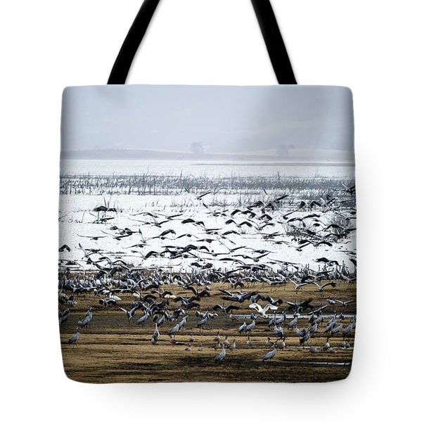 Tote Bag featuring the photograph Crane Dance by Torbjorn Swenelius