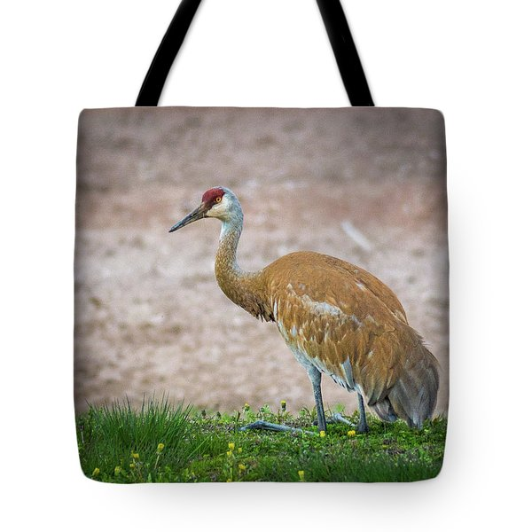 Tote Bag featuring the photograph Crane Down by Bill Pevlor