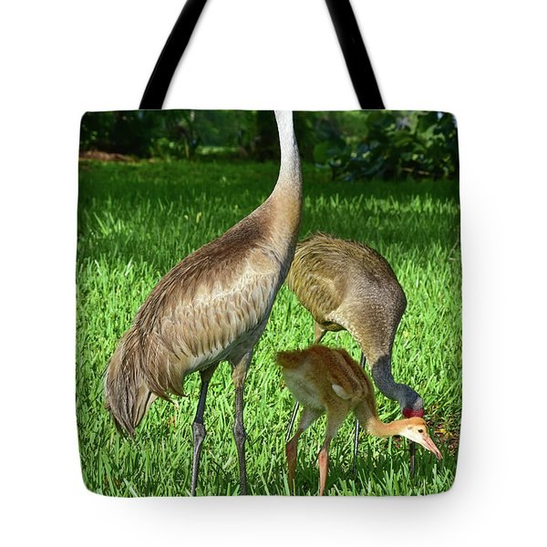 Crane Family Picnic Tote Bag