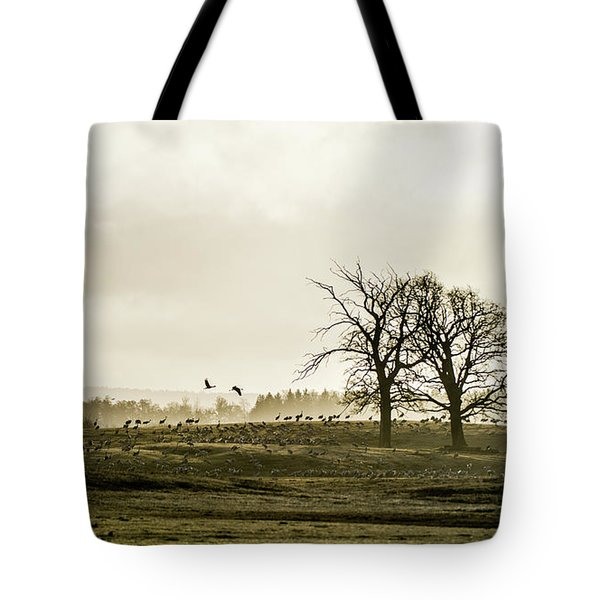 Tote Bag featuring the photograph Crane Hill by Torbjorn Swenelius