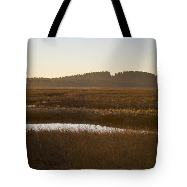 Crane Reservation Sunrise Crane Beach Ipswich Ma Tote Bag