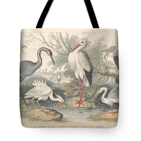 Cranes Tote Bag by Dreyer Wildlife Print Collections