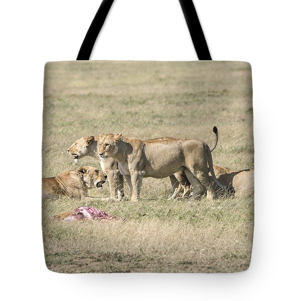 Tote Bag featuring the photograph Crater Lions Of Ngorongoro by Pravine Chester