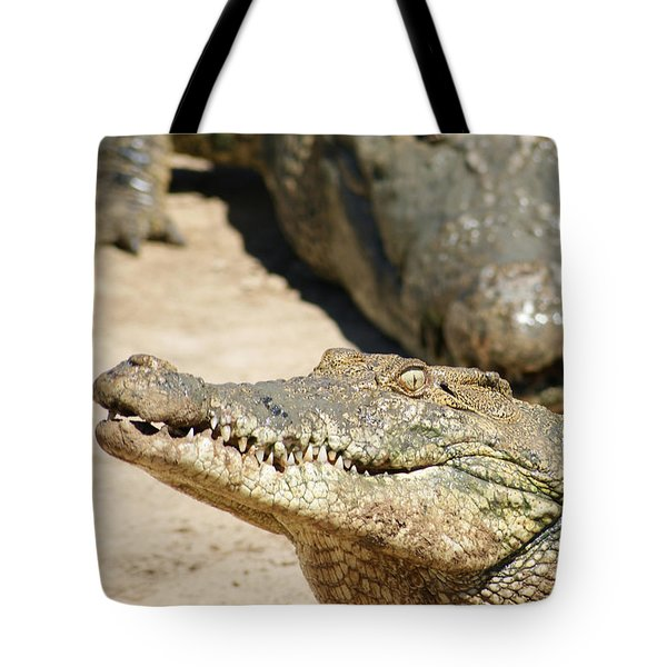 Tote Bag featuring the photograph Crazy Saltwater Crocodile by Gary Crockett