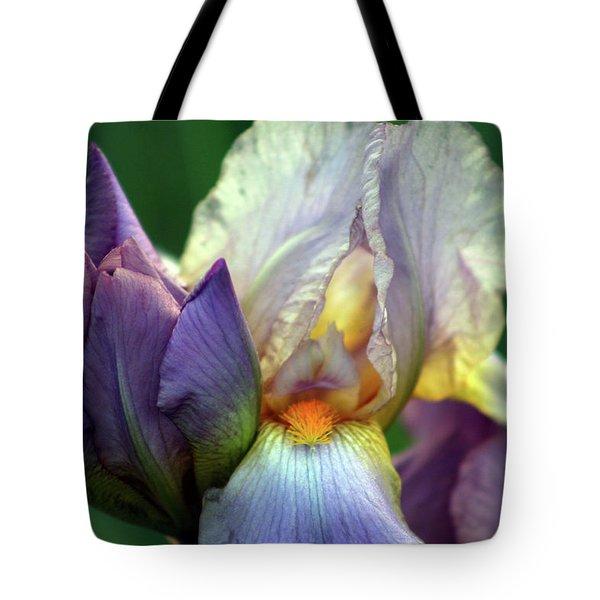 Cream And Purple Bearded Iris With Bud 0065 H_2 Tote Bag