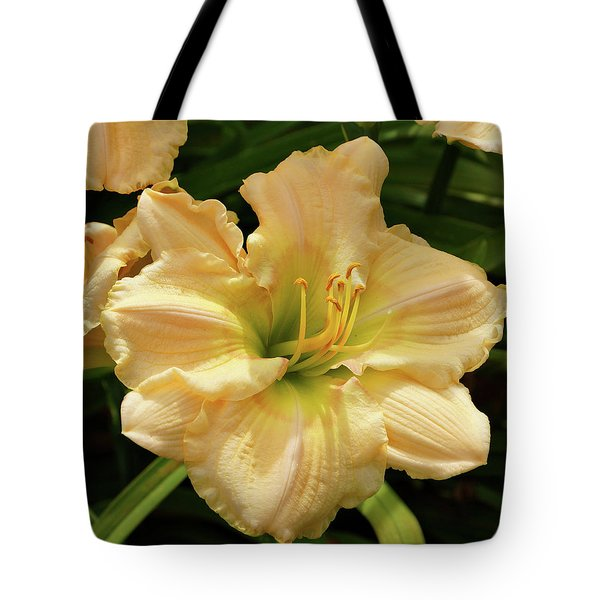 Tote Bag featuring the photograph Cream Daylily by Sandy Keeton
