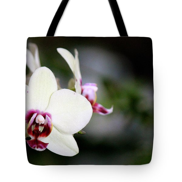 Tote Bag featuring the photograph Creaminess by Silke Brubaker