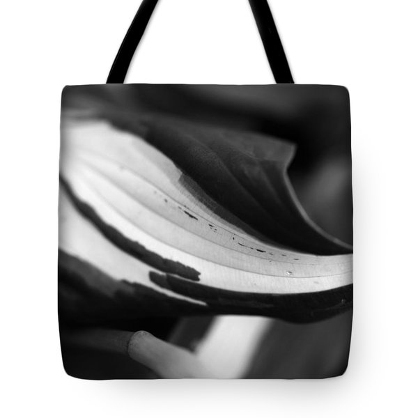 Creator's Art Work Tote Bag by Wanda Brandon