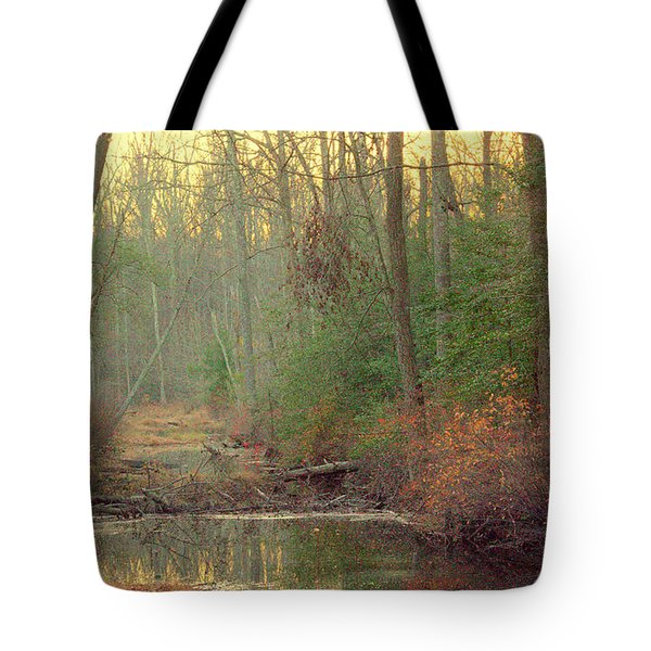 Creek Bed Tote Bag