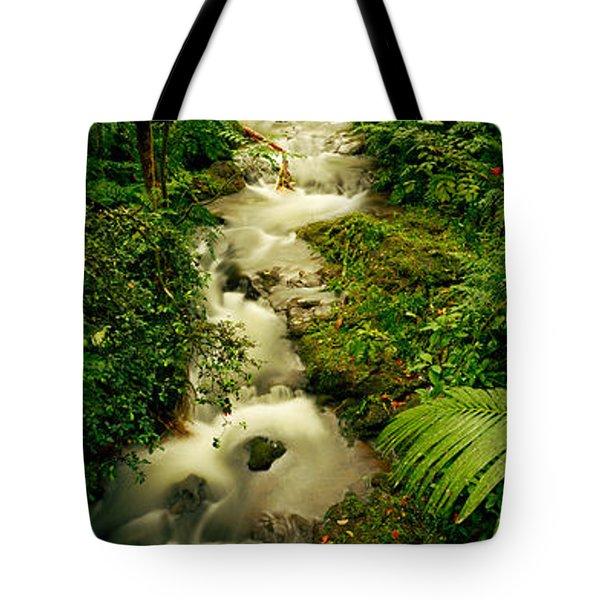 Creek Flowing Through A Rainforest Tote Bag