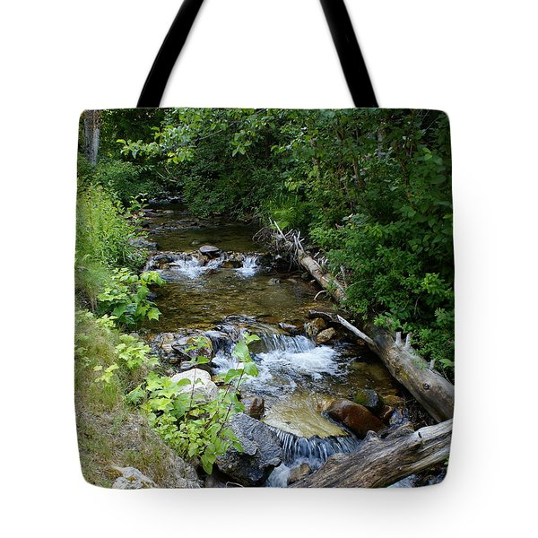 Tote Bag featuring the photograph Creek On Mt. Spokane 1 by Ben Upham III