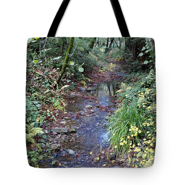 Creek On Mt Tamalpais 2 Tote Bag