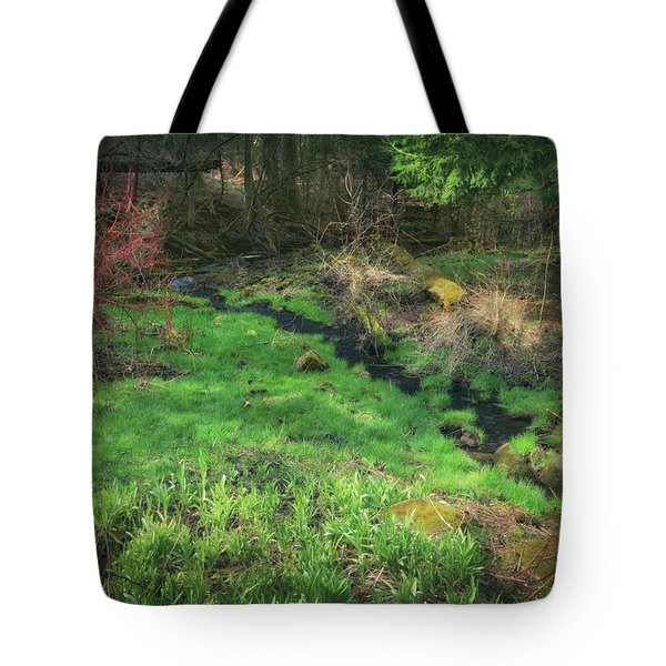 Creek - Spring At Retzer Nature Center Tote Bag by Jennifer Rondinelli Reilly - Fine Art Photography