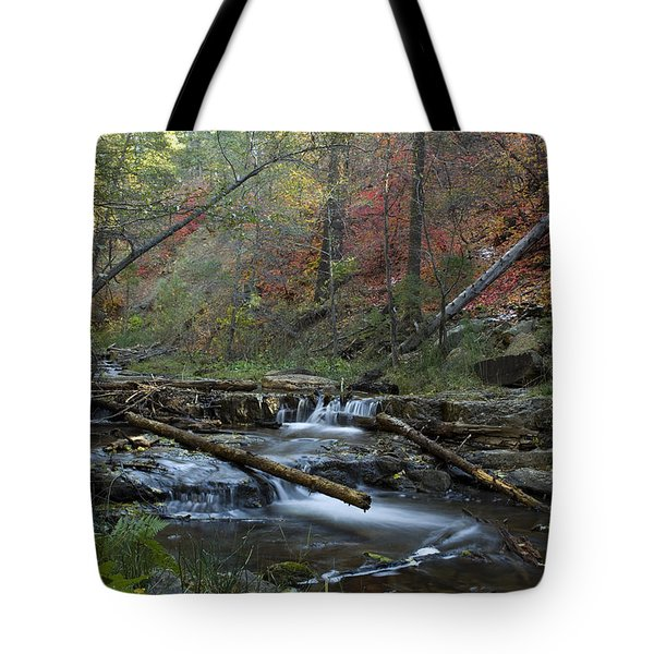 Creekside Color Tote Bag by Sue Cullumber