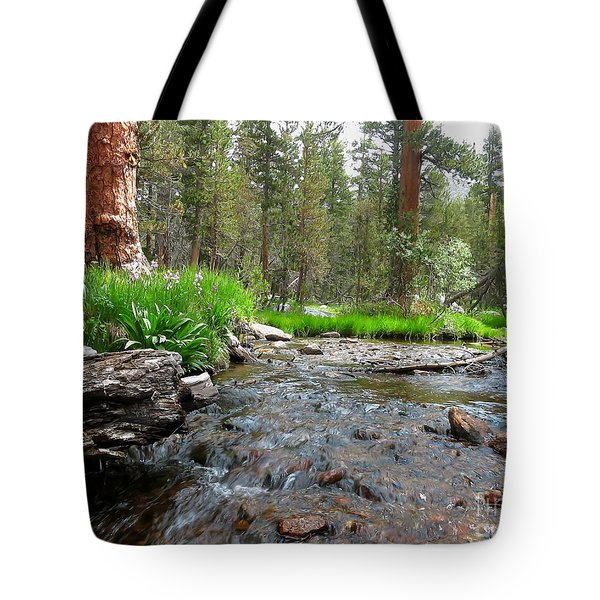 Tote Bag featuring the photograph Creekside by Paul Foutz