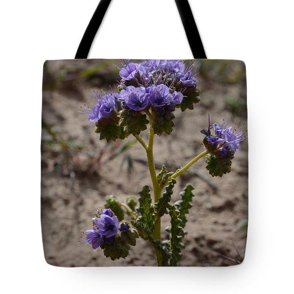 Crenulate Phacelia Flower Tote Bag