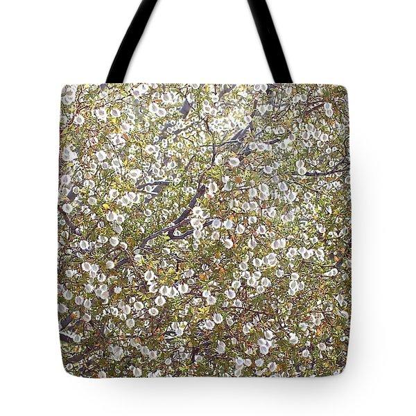 Creosote Bush Tote Bag