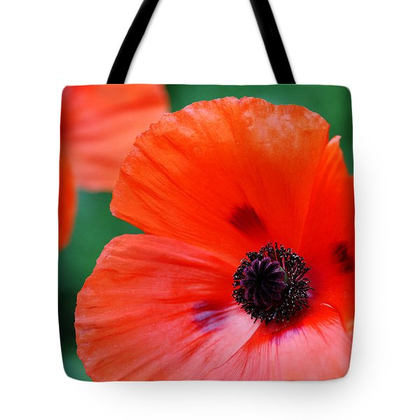 Crepe Paper Petals Tote Bag by Debbie Oppermann