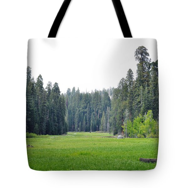 Tote Bag featuring the photograph Crescent Meadow by Kyle Hanson