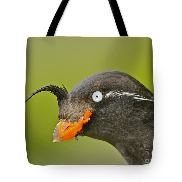 Crested Auklet Tote Bag