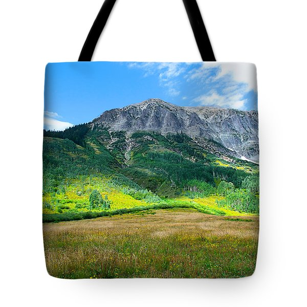 Crested Butte Aspens Tote Bag