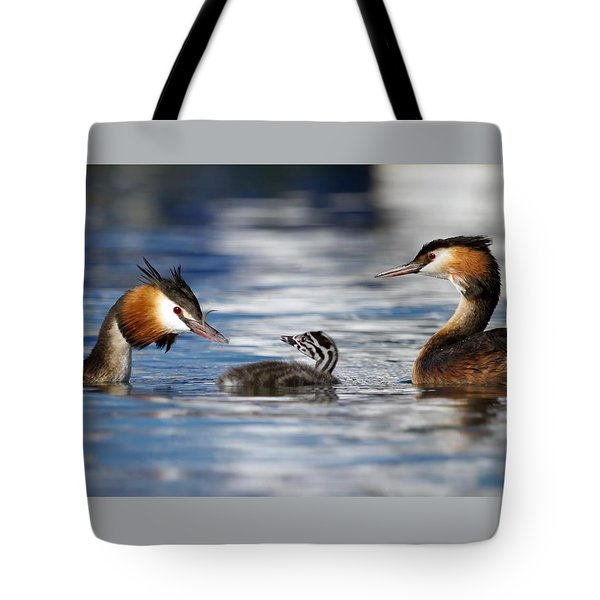 Crested Grebe, Podiceps Cristatus, Ducks Family Tote Bag by Elenarts - Elena Duvernay photo